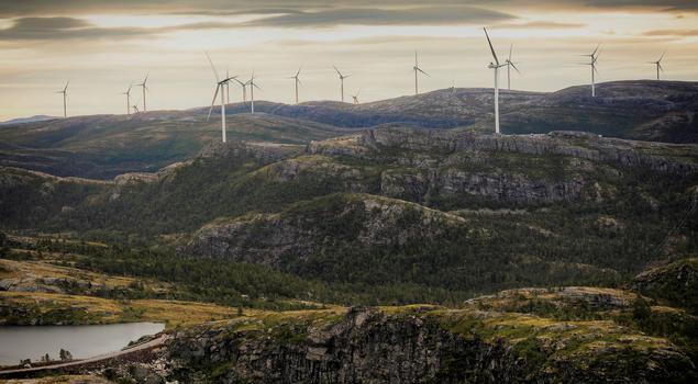 Roan windfarm.