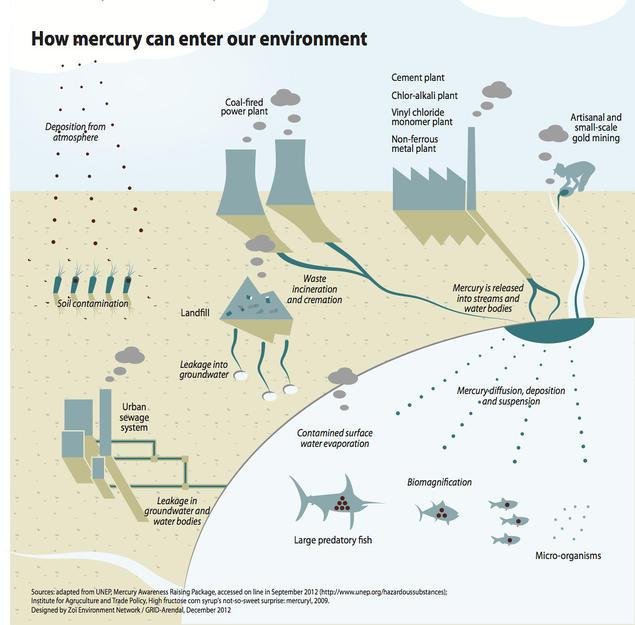 Mercury emissions