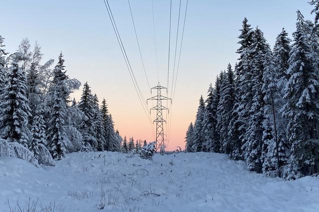 Kraftmaster i norsk vinterskog og solnedgang. Foto: Anna Valberg/FNI