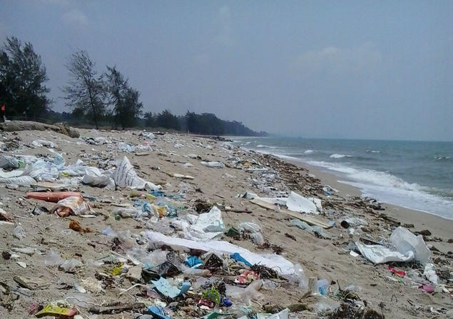 MARINE POLLUTION: Some 8.8 million metric tons of plastic waste are said to be dumped in the world's oceans each year, posing a serious threath to fish, seabirds and other wildlife. Photo: Foap