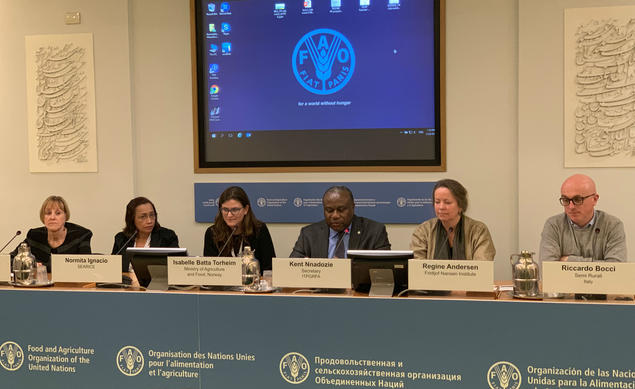 FAO meeting. Photo: Afshaan Shafi, FAO